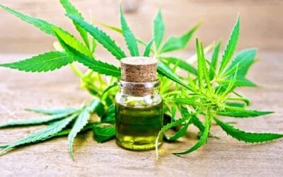 What are the benefits of CBD, and does it live up to the hype?
