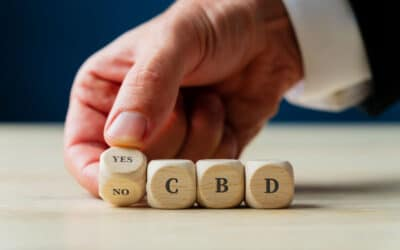 Common Questions About CBD.